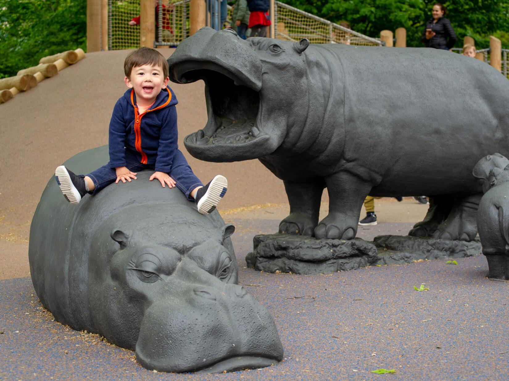 Safari Playground Reopens