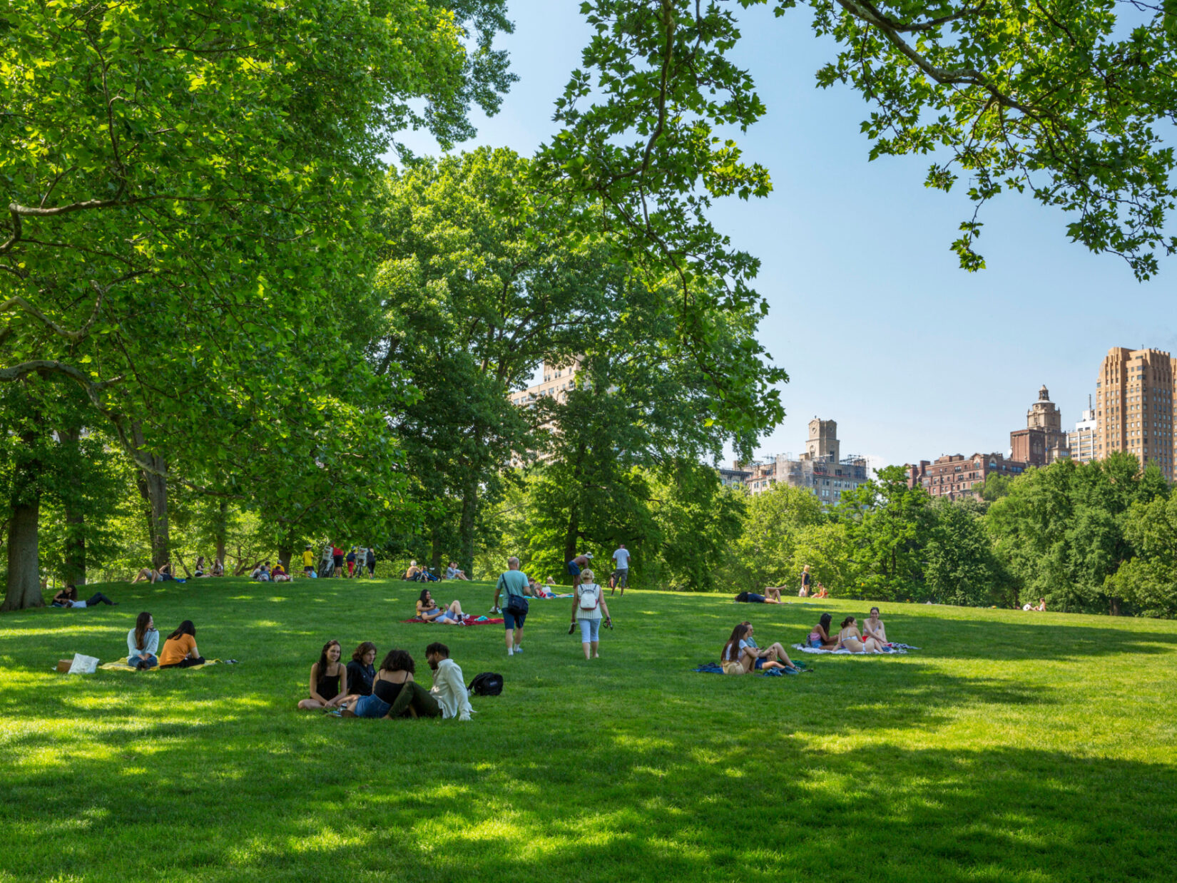 Clusters of parkgoers lounge in the shade of the trees of the Sheep Meadow