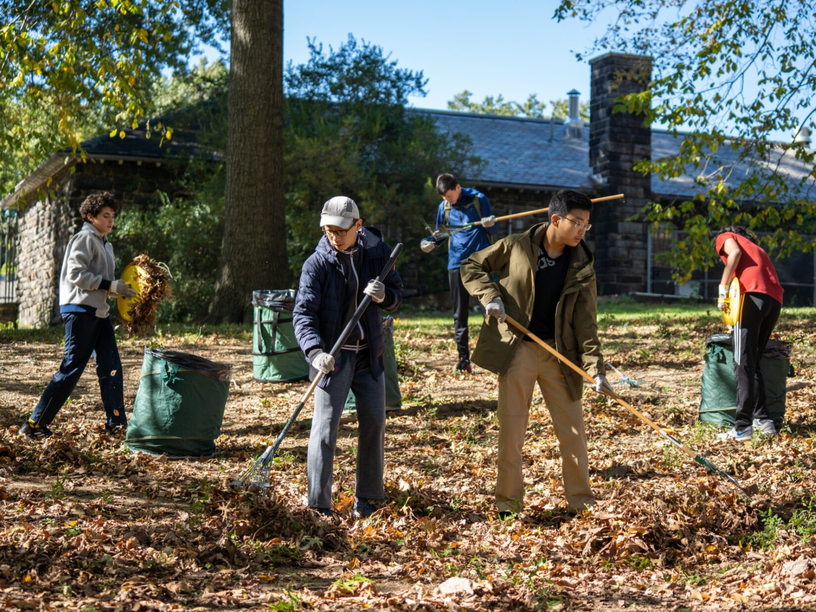 Teens with rakes volunteer on a leaf-strewn landscape in Central Park
