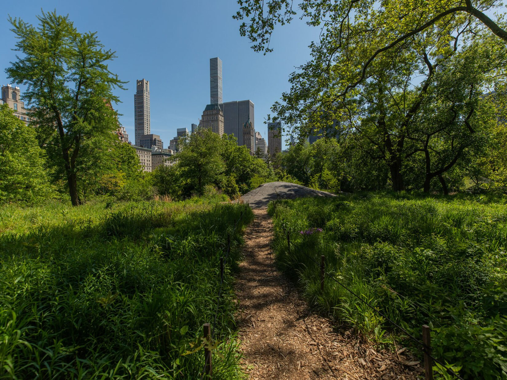 A footpath leading up the Dene Slope, with the skyline of Manhattan in the distance