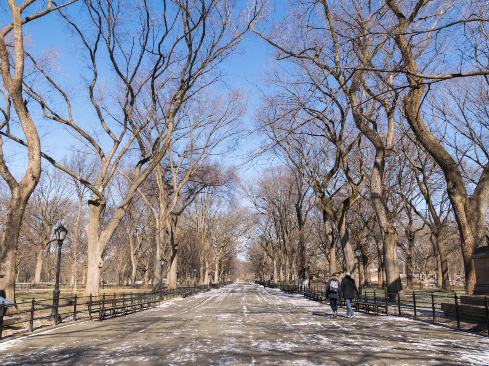 A look down the length of the Mall on a leafless winter day