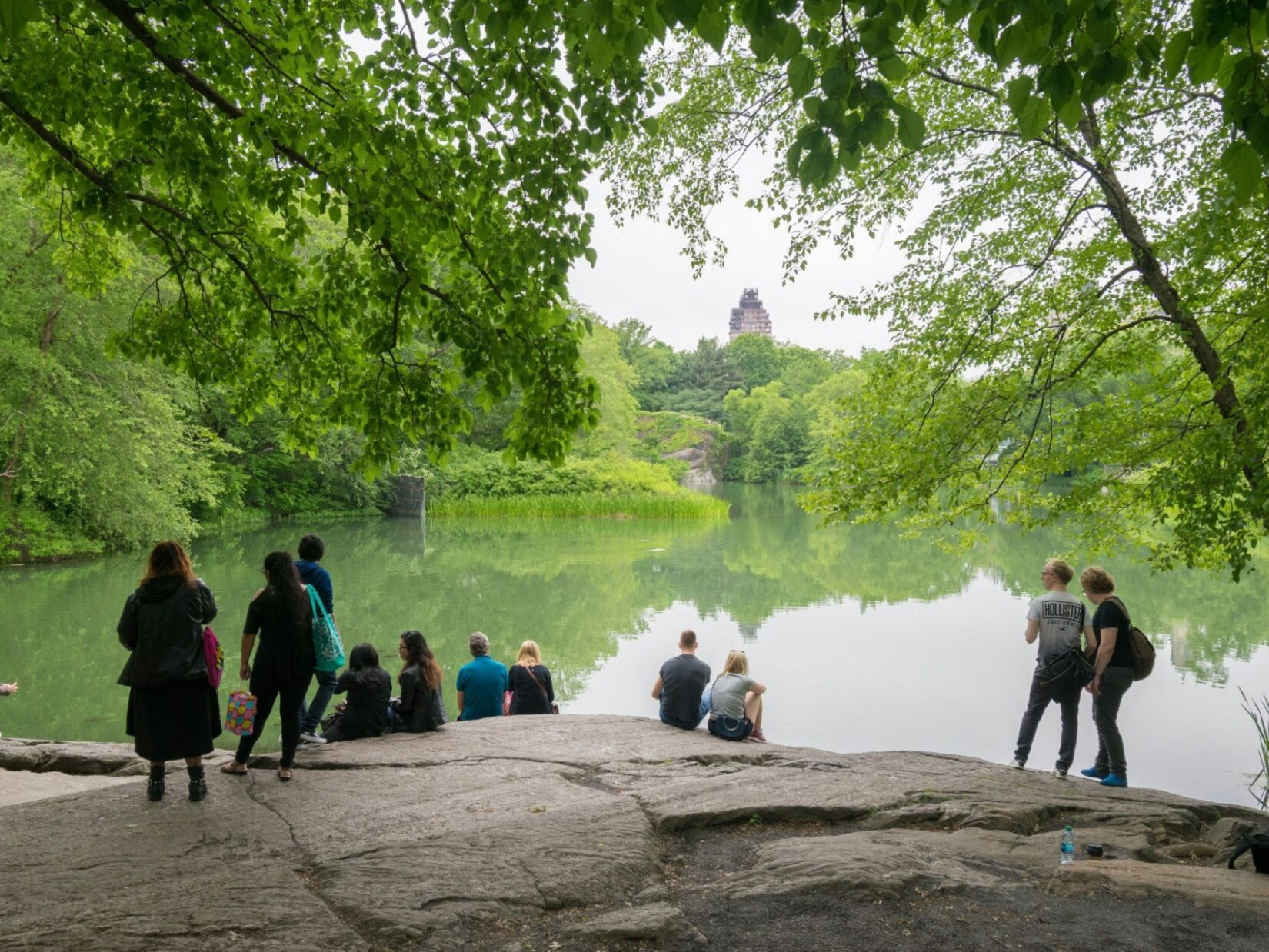 Summer park-goers sit on a wide rock under the shade, taking in the expanse of Turtle Pond.