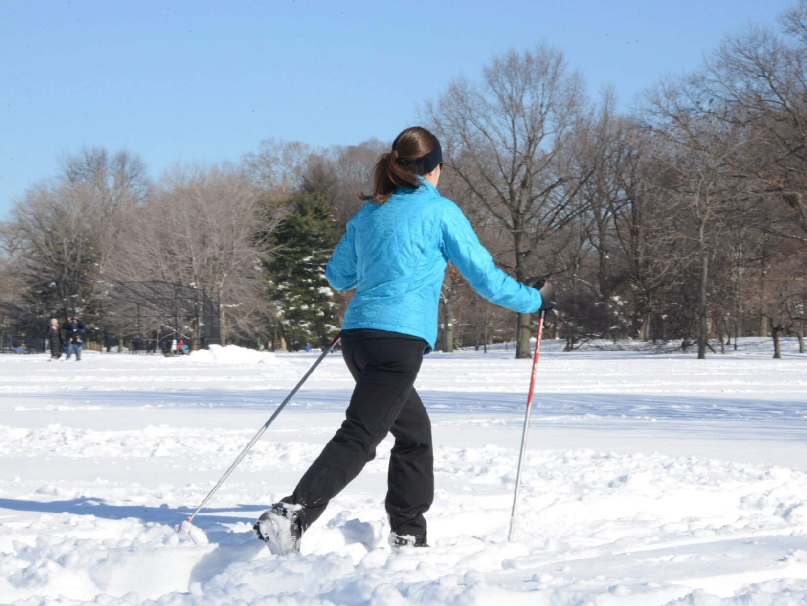 A cross-country skier crosses the Park, deep in show