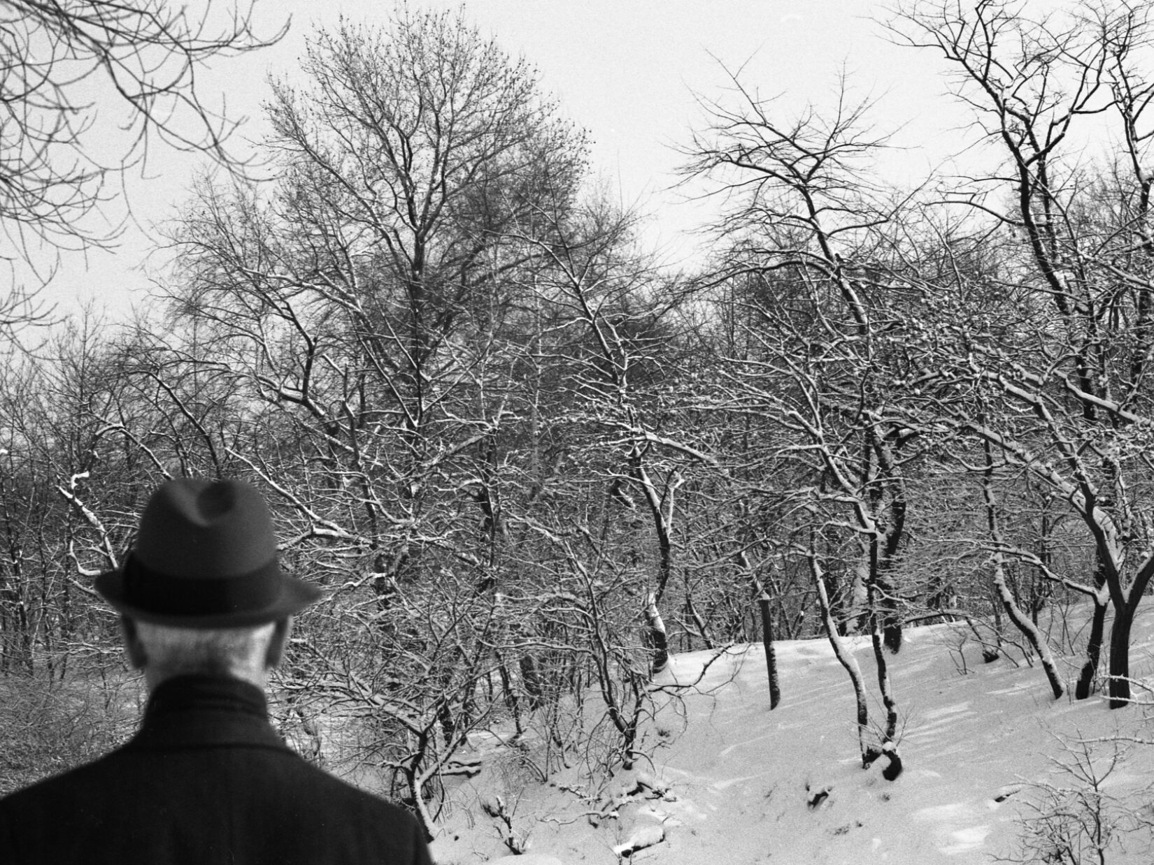 A man in a fedora is seen from behind with a wintery scene in the background