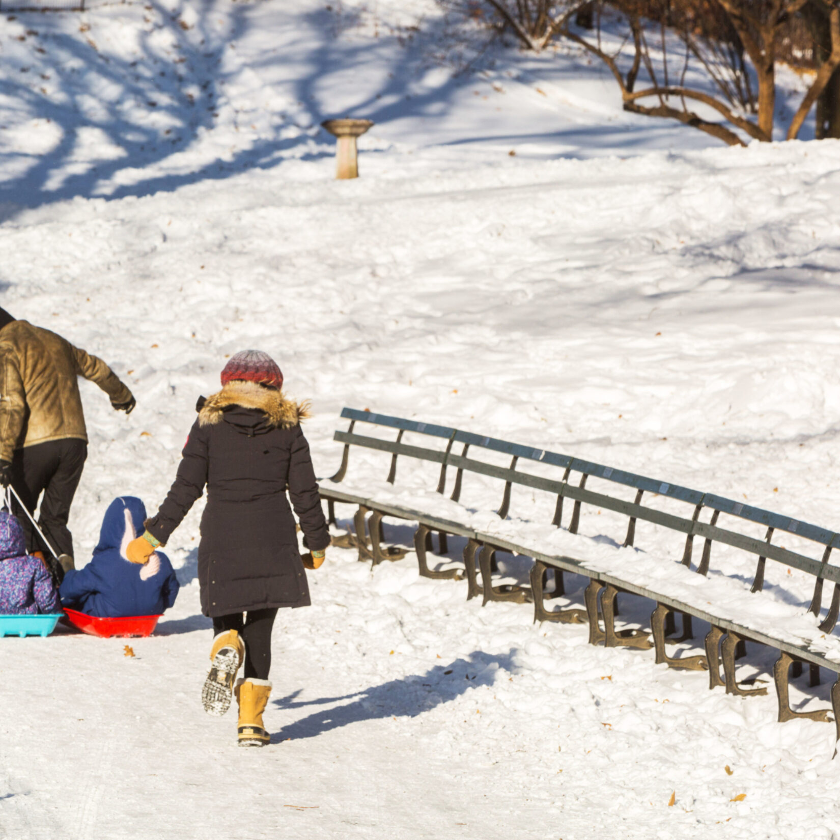 A young family, with two toddlers on sleds, make their way to Cedar Hill