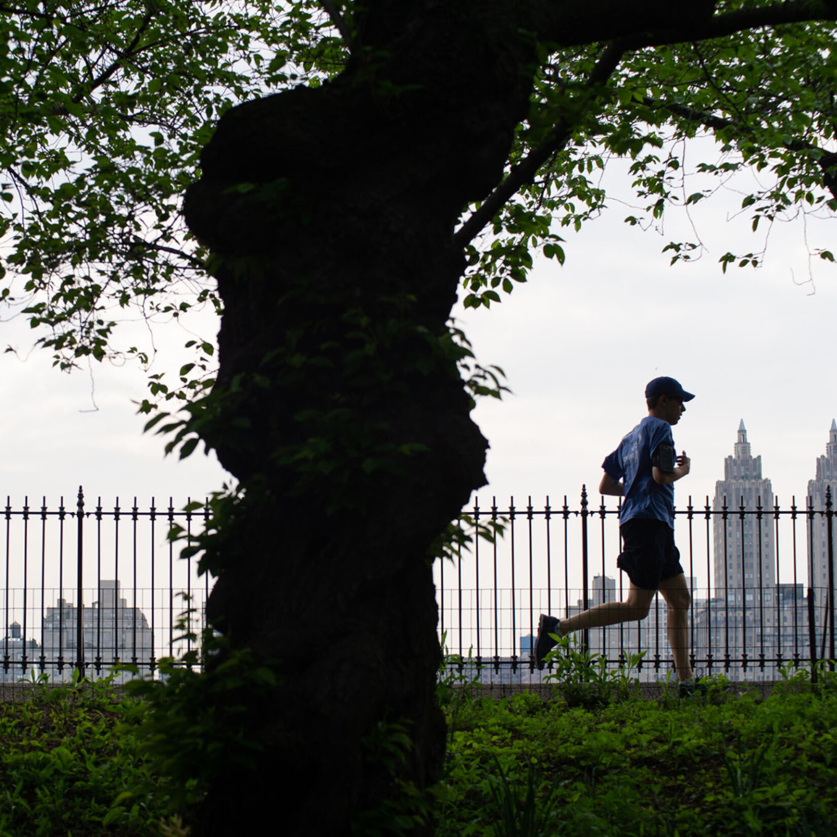 The Runners Guide to Central Park