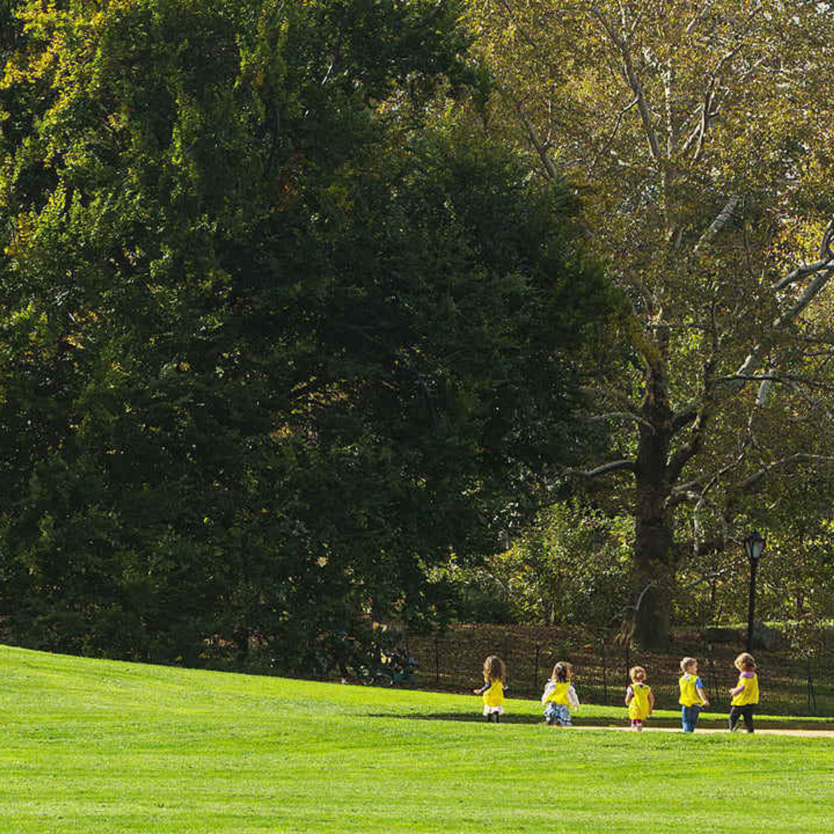 A rolling hill in the distance is scaled by a small group of young children on a sunny, autumn day.