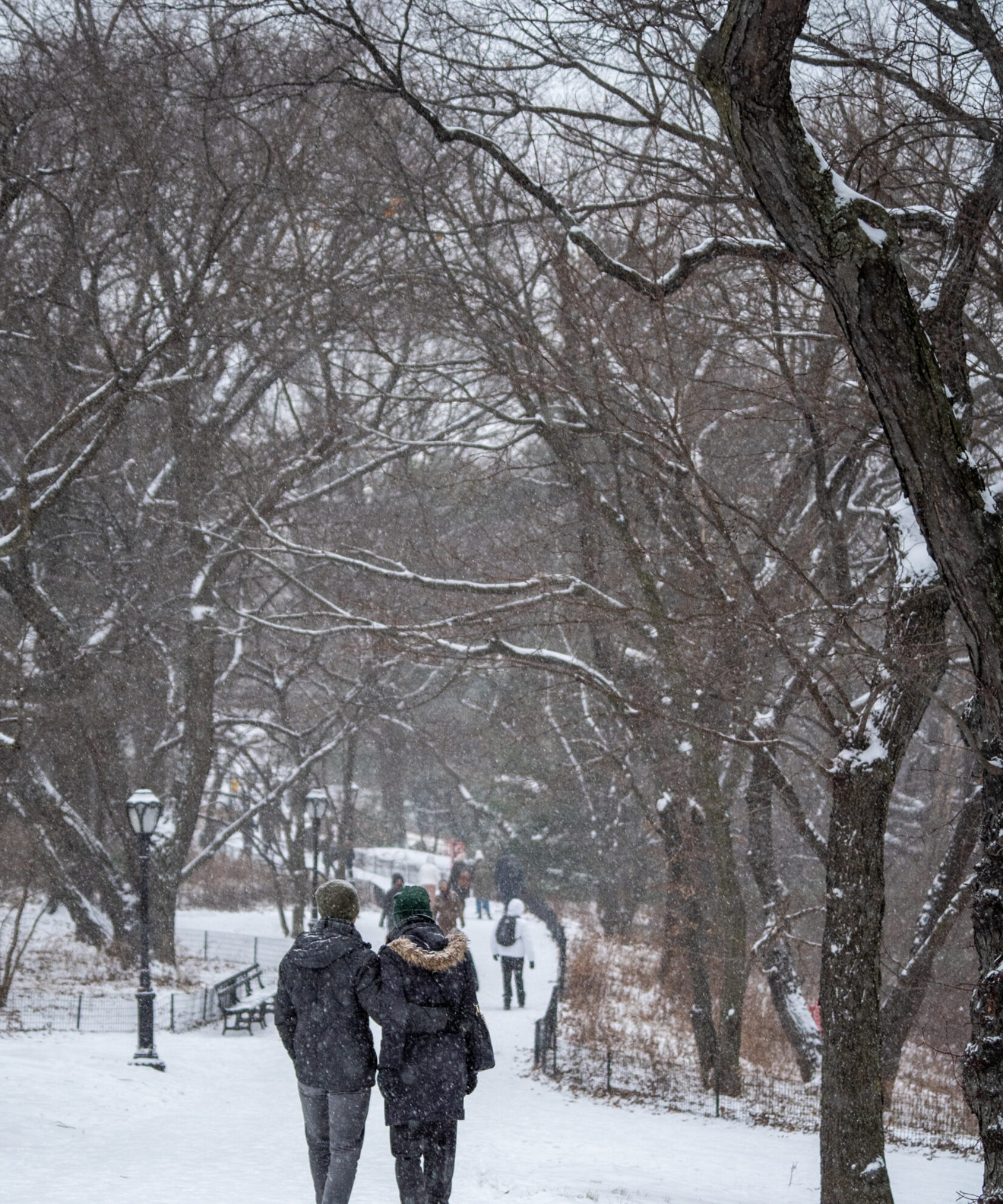 Two park goers shown bundled up for a winter stroll down a path
