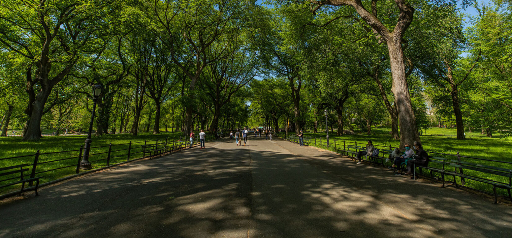 Looking down the length of the Mall in spring