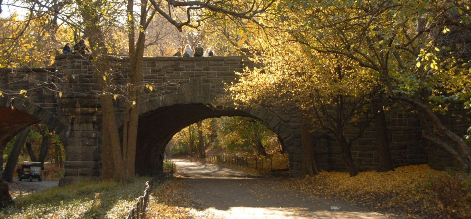 The Eaglevale Arch is seen beneath looming branches of fall leaves
