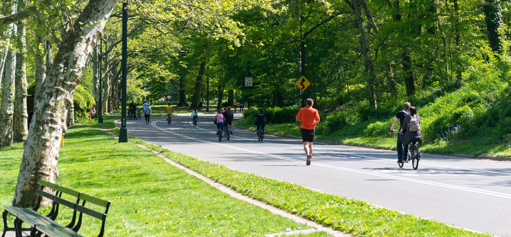 Joggers and bicyclists exercise on the roadway in summer