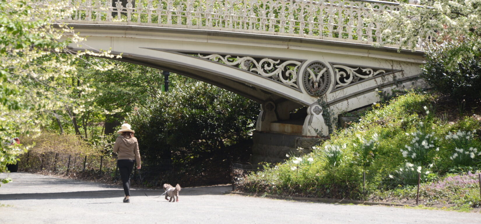 A woman walks her dog under the arch of Bridge 27 in spring