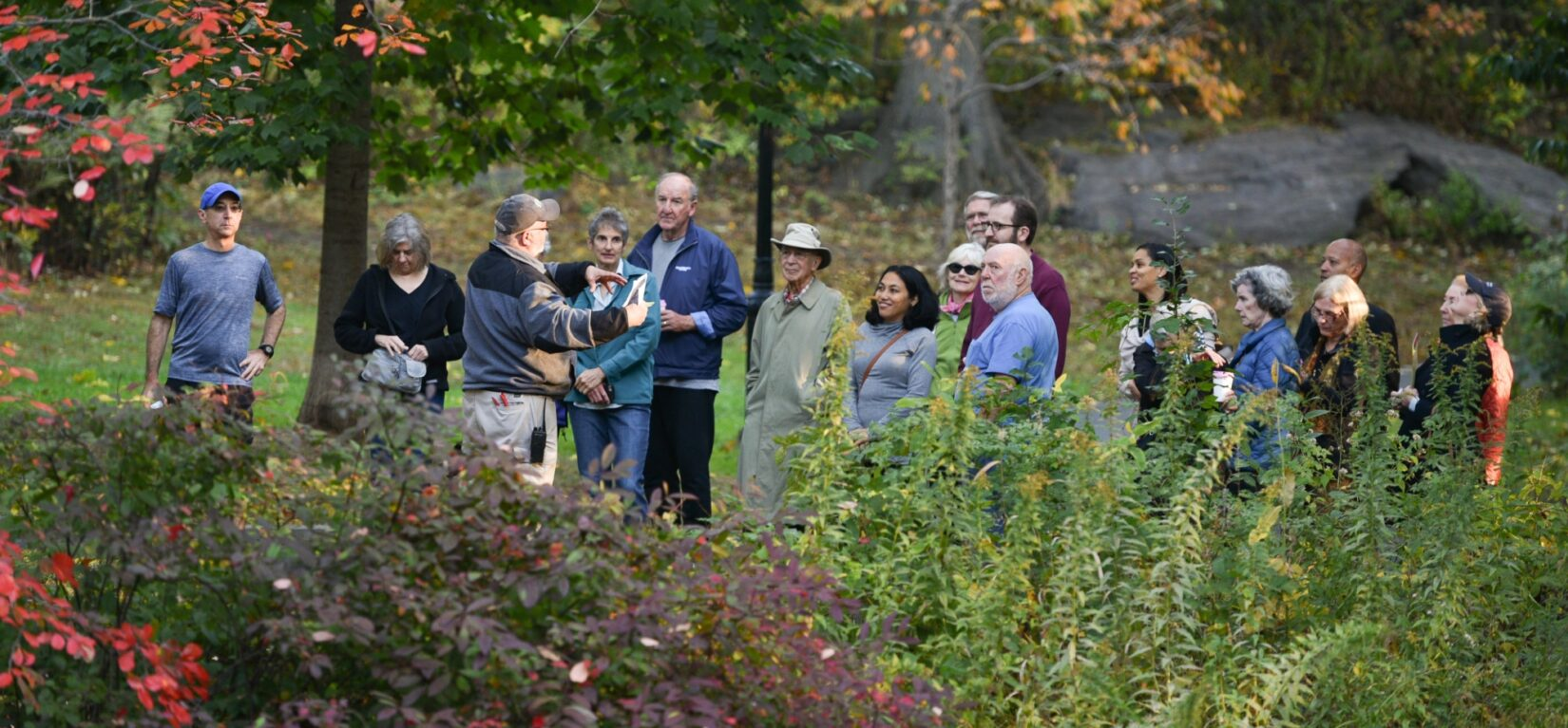 A Conservancy staff member lectures a tour of parkgoers in early autumn