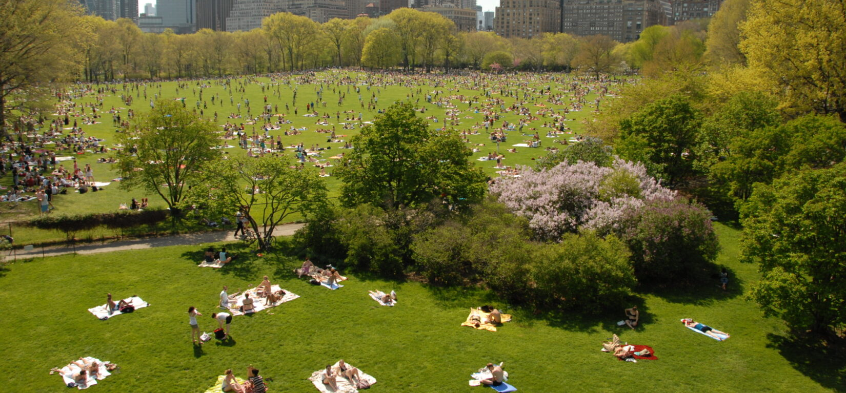 Visitors enjoying the sunshine dot the Sheep Meadow landscape