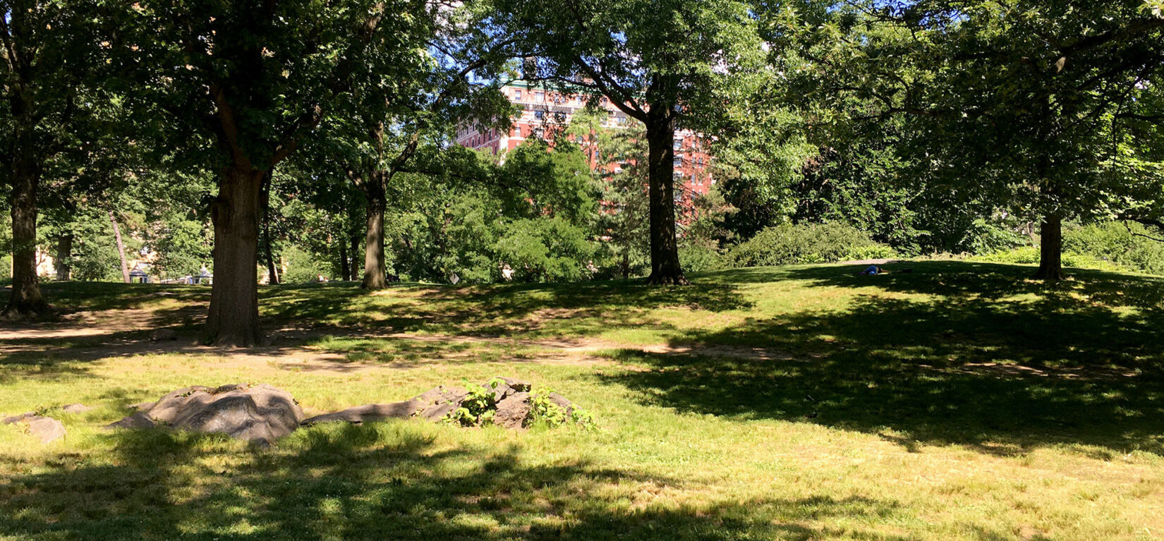 The site of Seneca Village in the present day Park