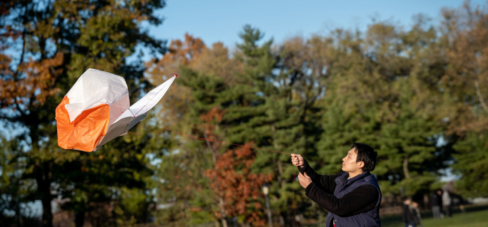 A visitor cajoles his kite into the wind on an autumnal day in the Park