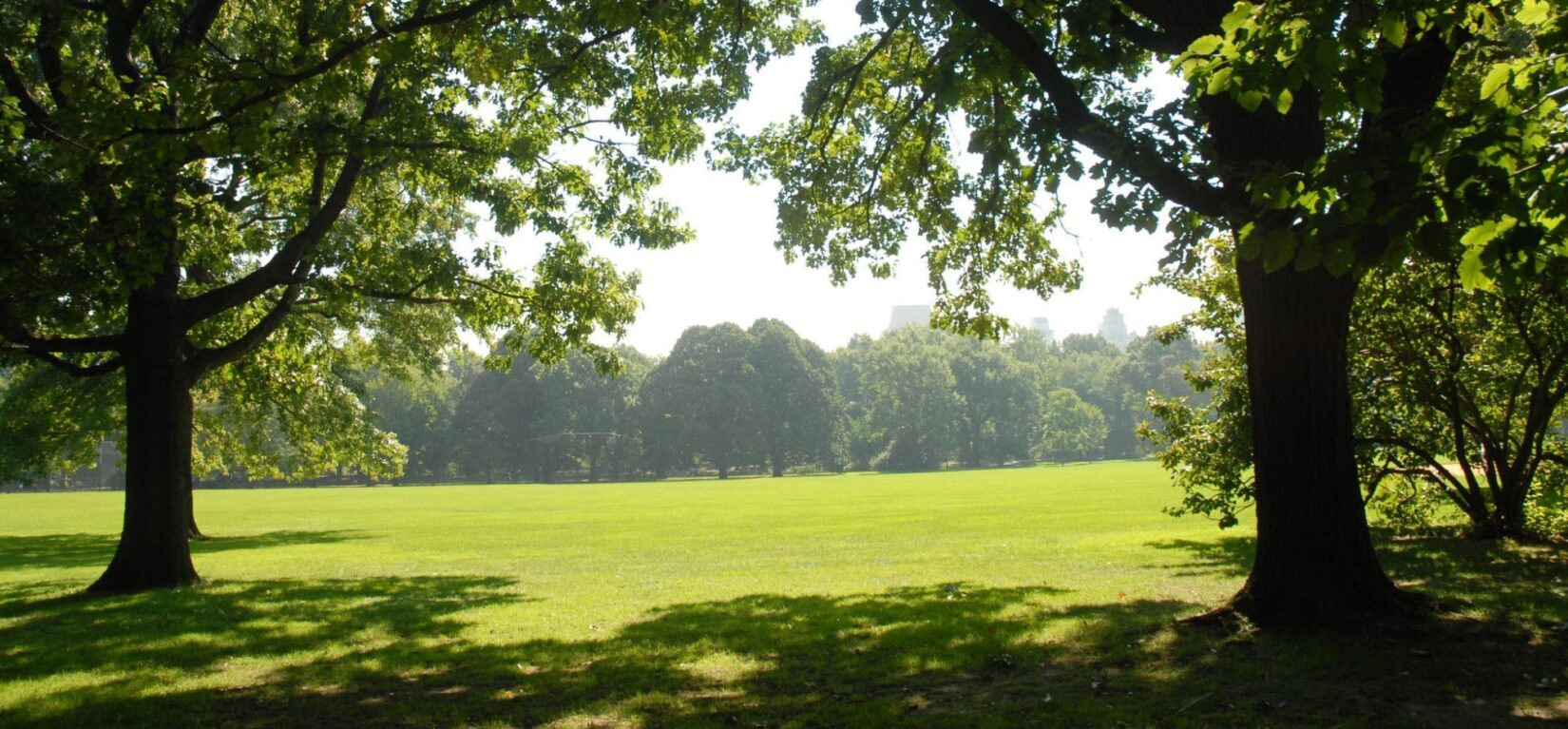 A summer haze is visible in the distance across the width of the Lawn.