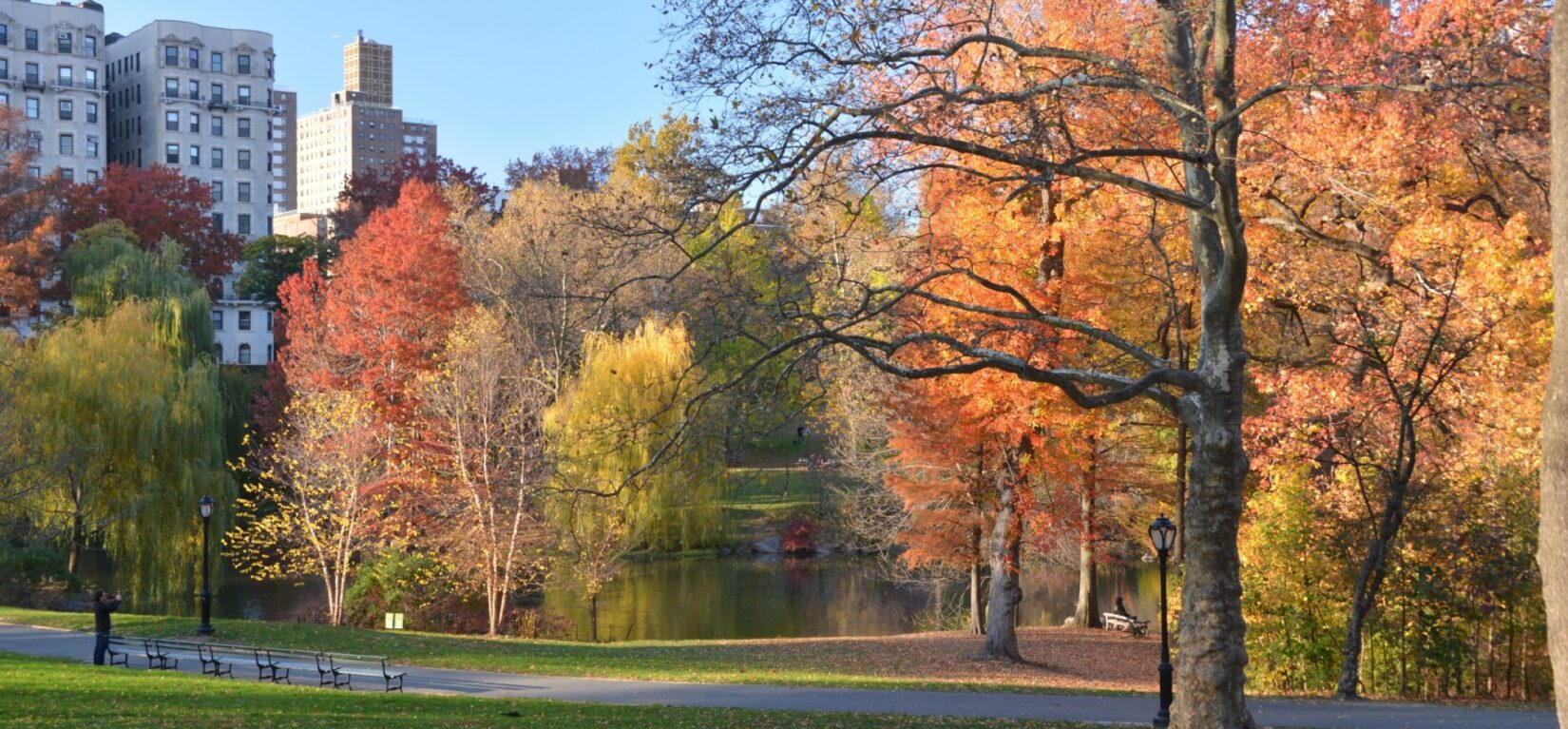 A clear autumn sky and colorful leaves enliven this photo of the Pool