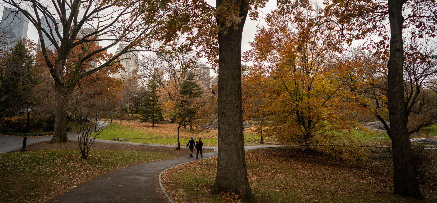 A couple walk the footpath in late Autumn on the South End of the Park