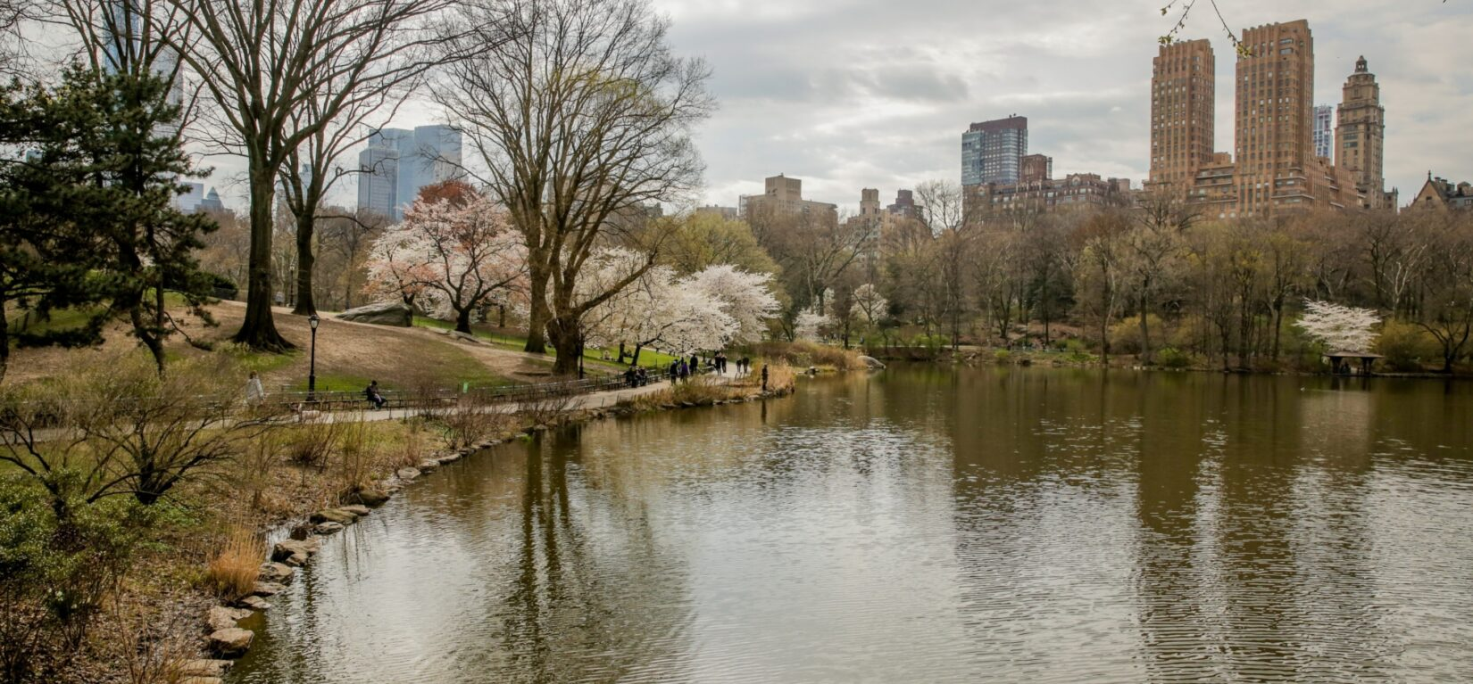 Cherry blossoms announce the arrival of spring, reflected in the Lake
