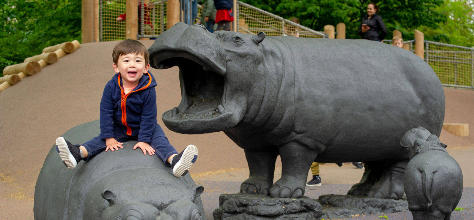 A young boy straddles one of the hippos of the playground