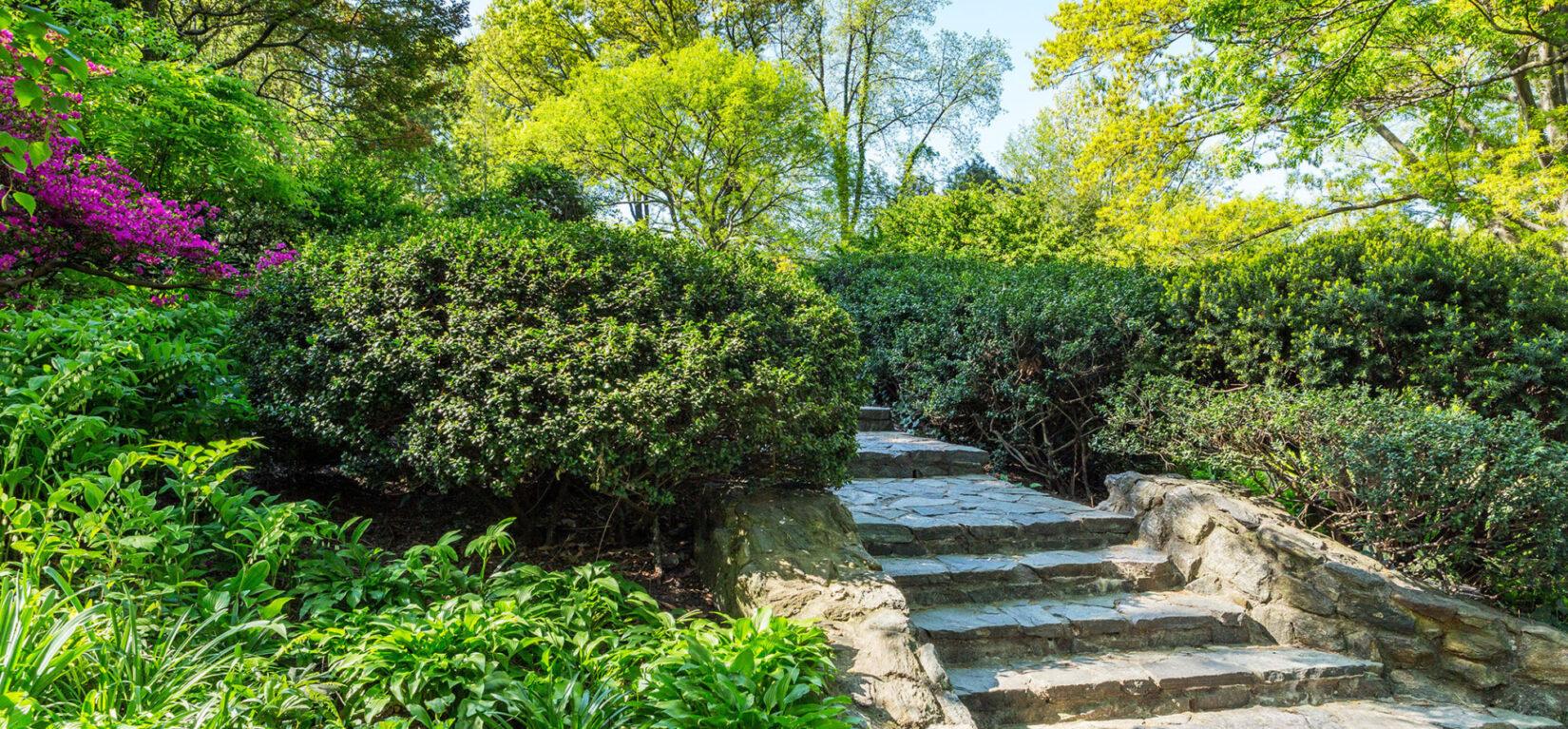Secrets of Shakespeare Garden