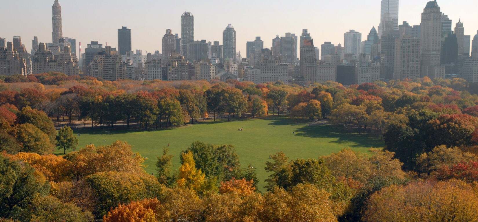 An aerial view of the Sheep Meadow in early autumn