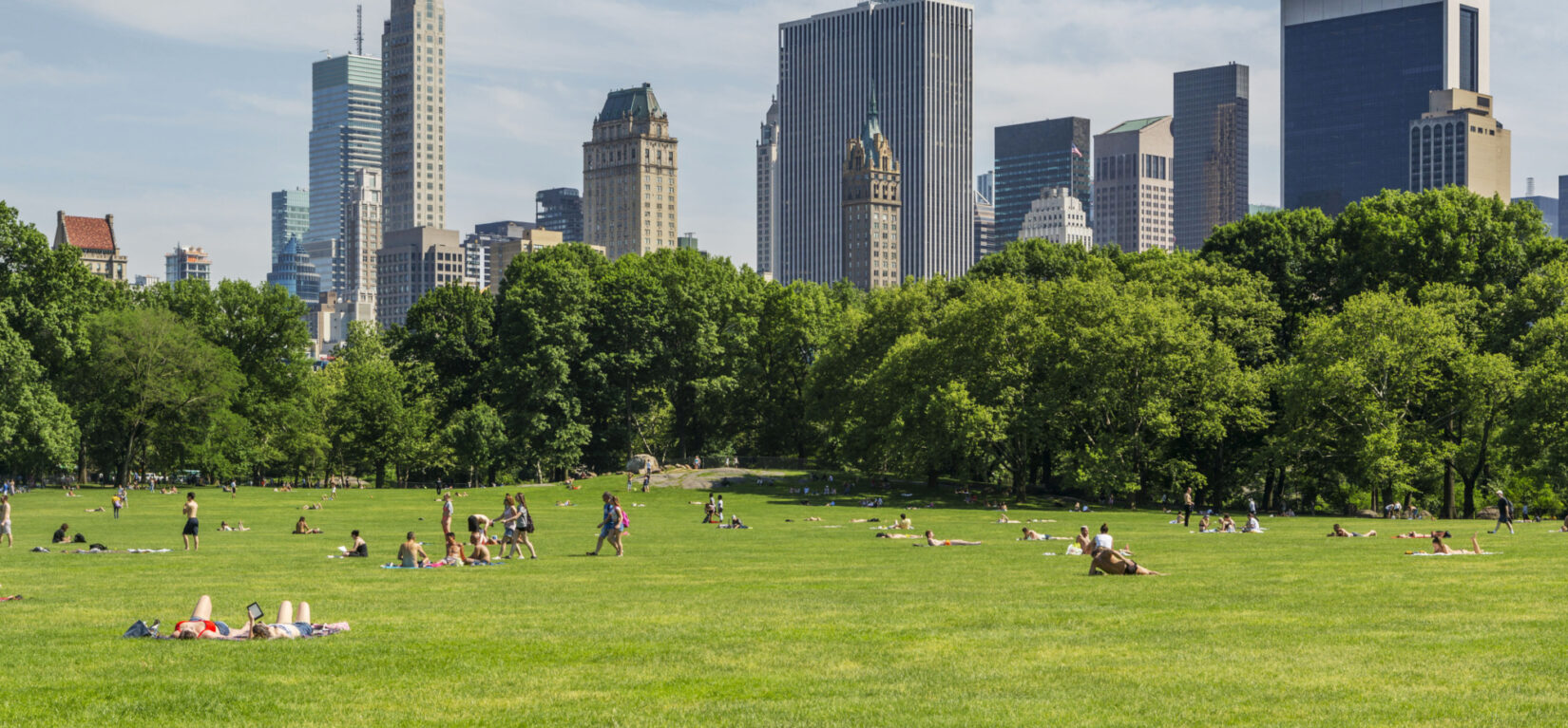 Parkgoers lounge on Sheep Meadow, with the skyscrapers of Manhattan's East Side filling the horizon.