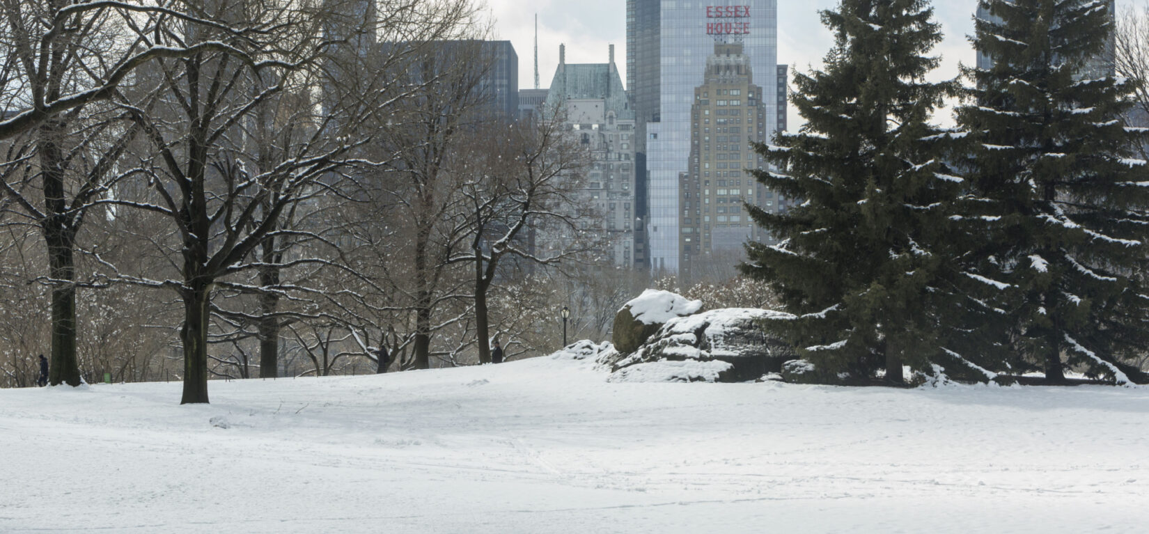 The Park under a blanket of thick snow