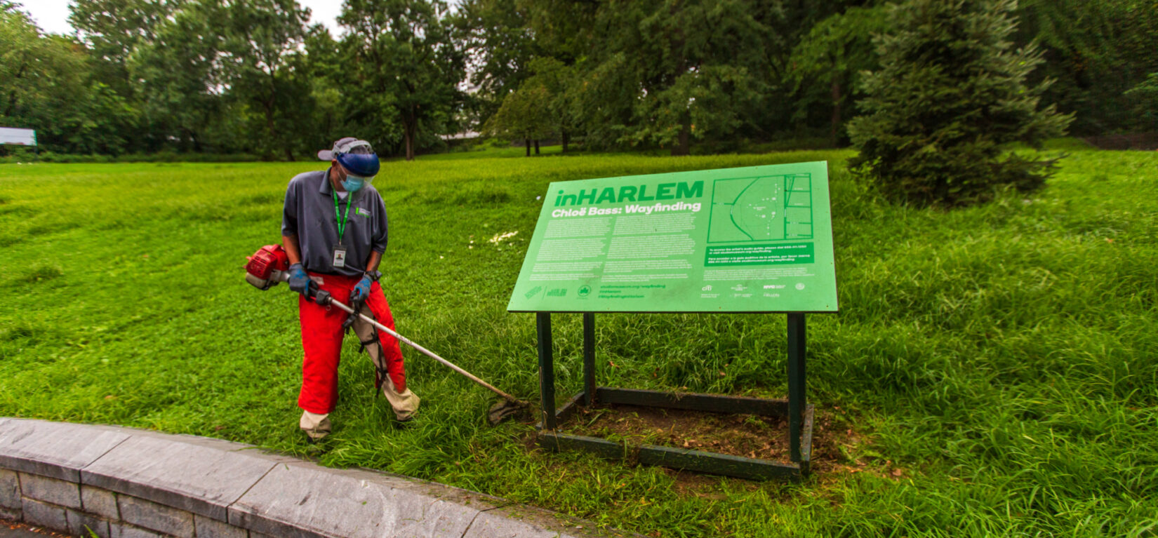 Conservancy groundskeeper string-trimming the grass around a sign.