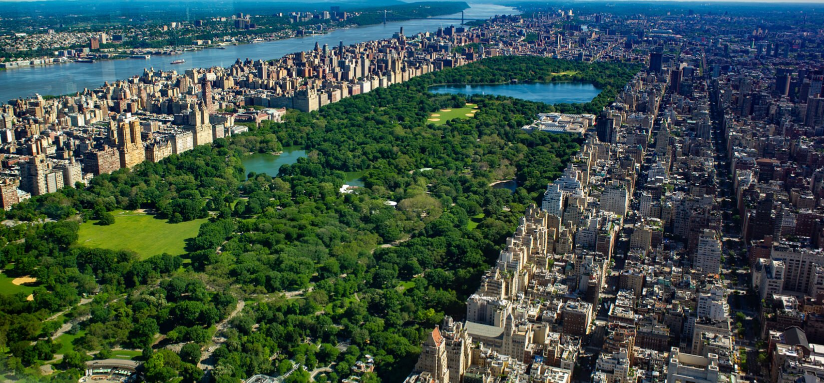 Aerial photo of Central Park in the summer