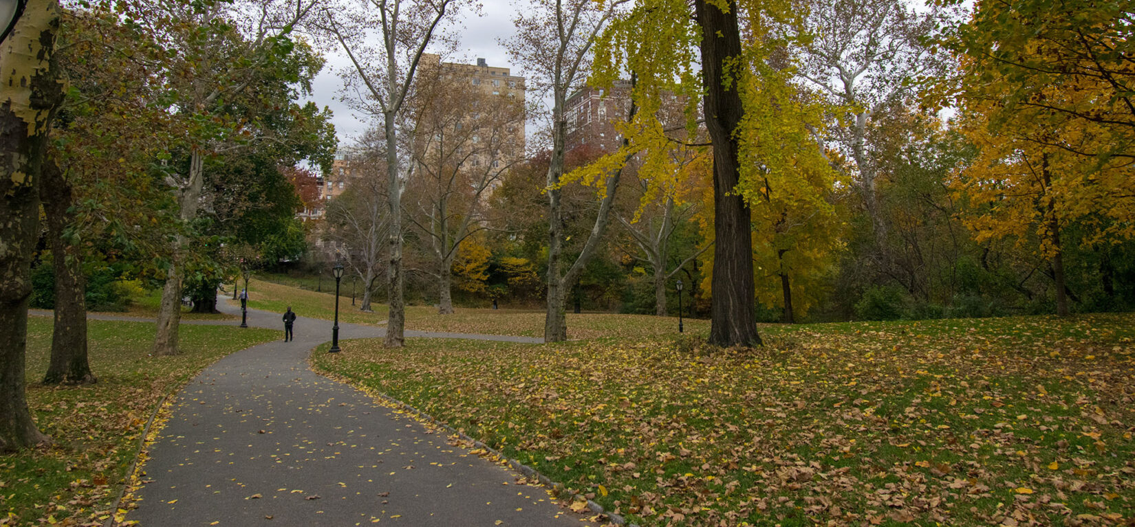 The History of Central Parks North End