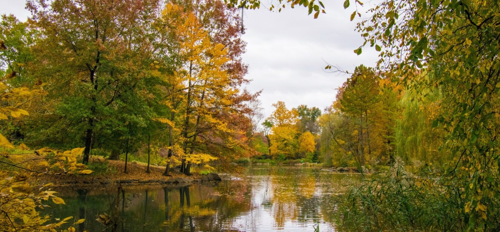 A view across the still waters of the pool, reflecting the autumn-colored leaves of the trees along its banks.