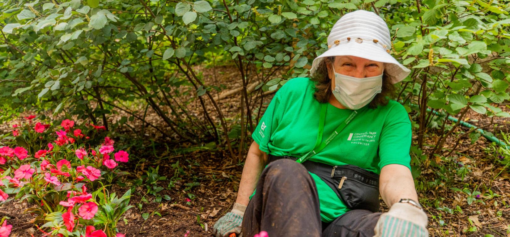 A landscape volunteer at work in a flowerbed