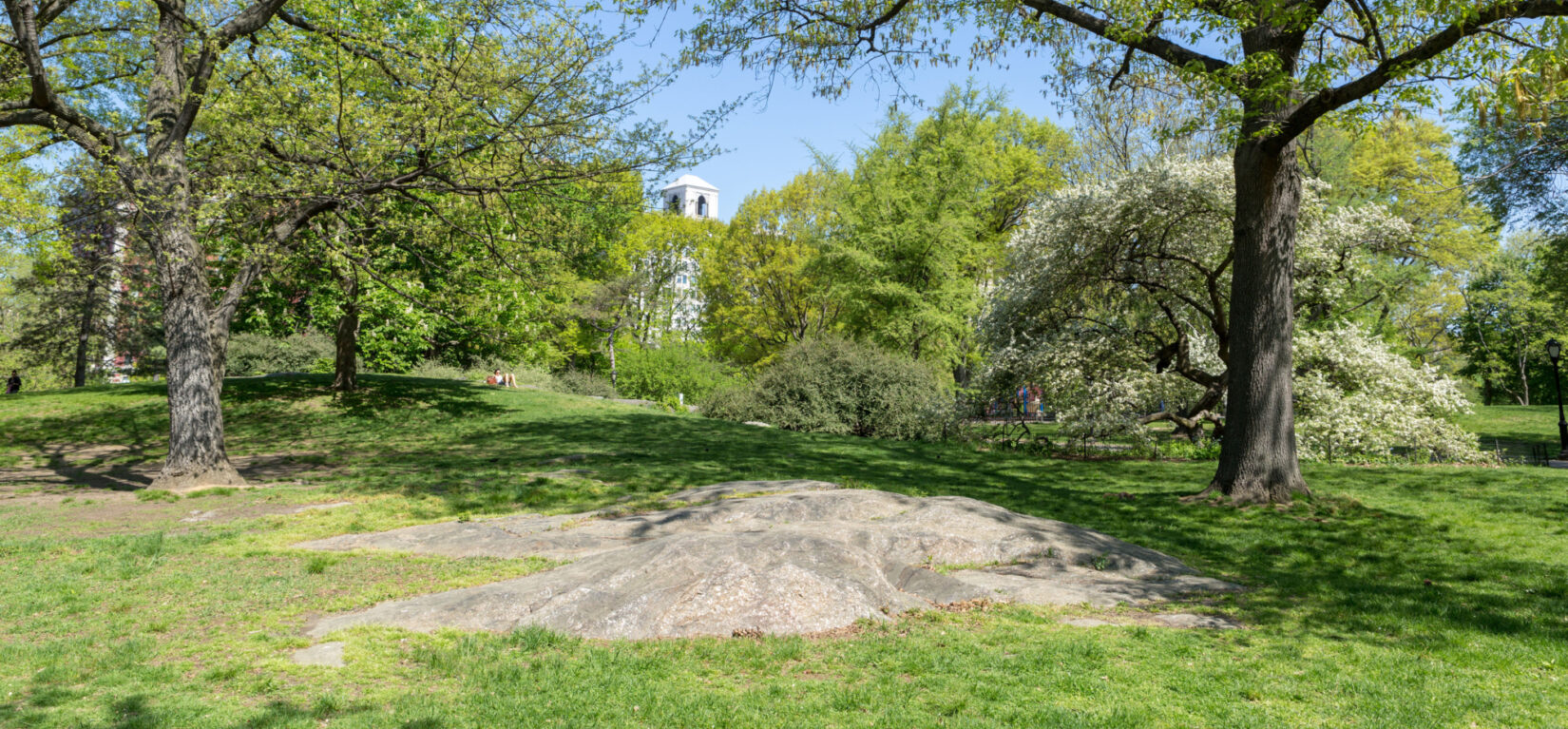 A rock outcropping at the Seneca Village site surrounded by trees in springtime