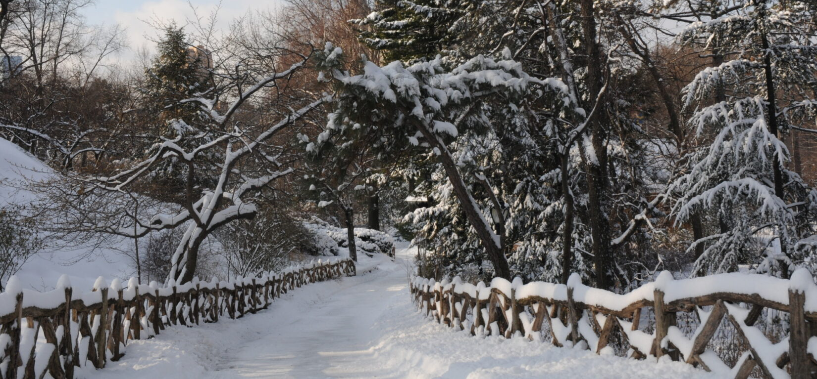 A recent snowfall turns this path, with rusitc fencing, into a classic winter scene