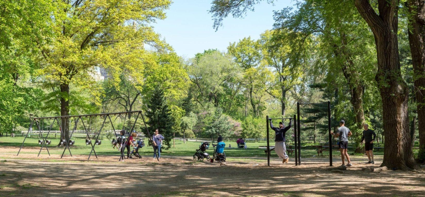 Ff wide 3x Pinetum Playground