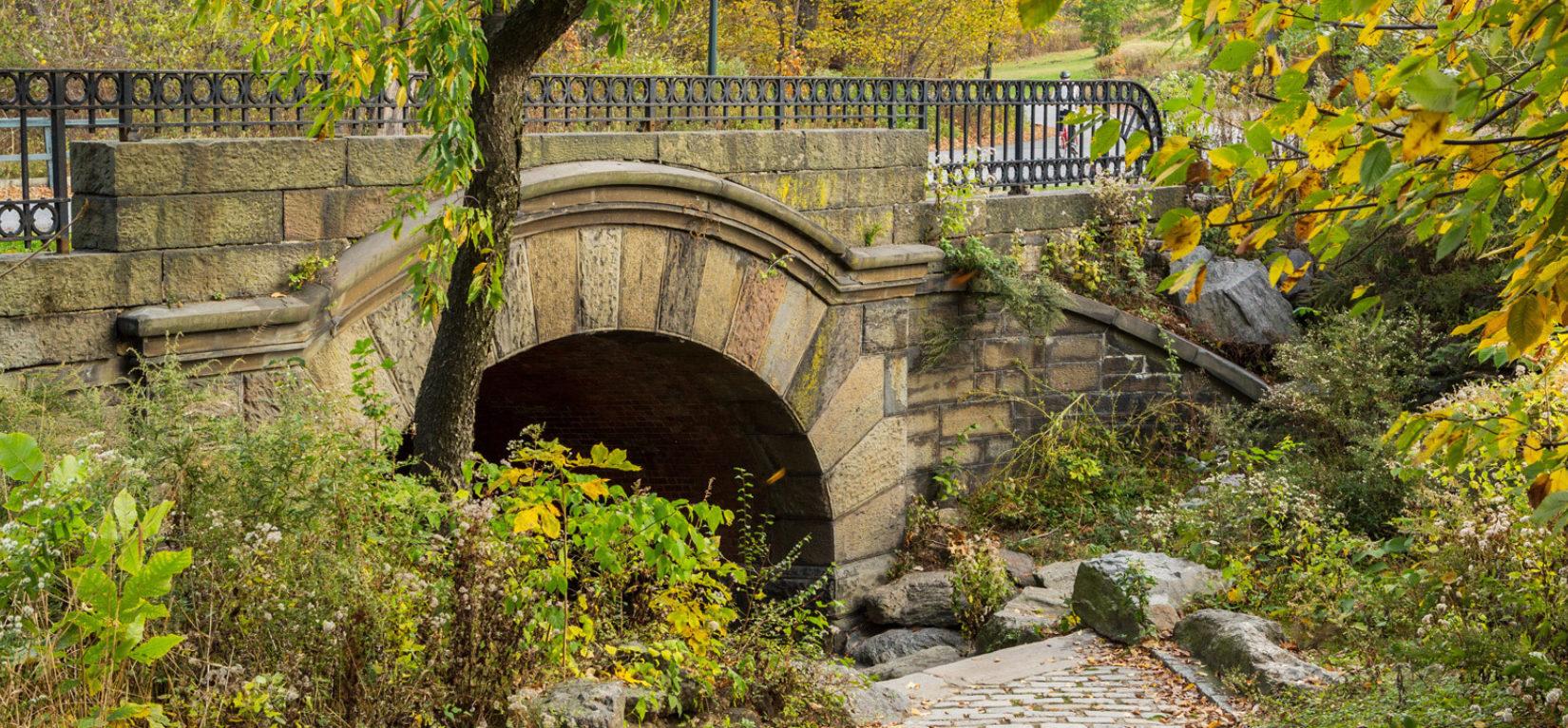 Ff wide springbanks arch