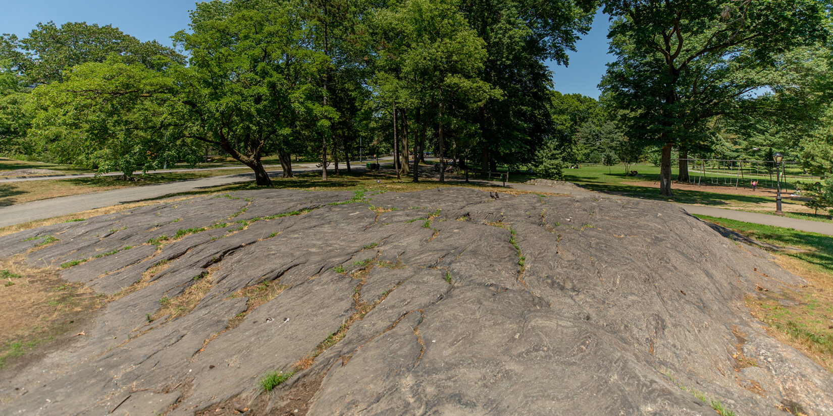 A view of some of Manhattan's original rocks, bordered at the top by a stand of trees