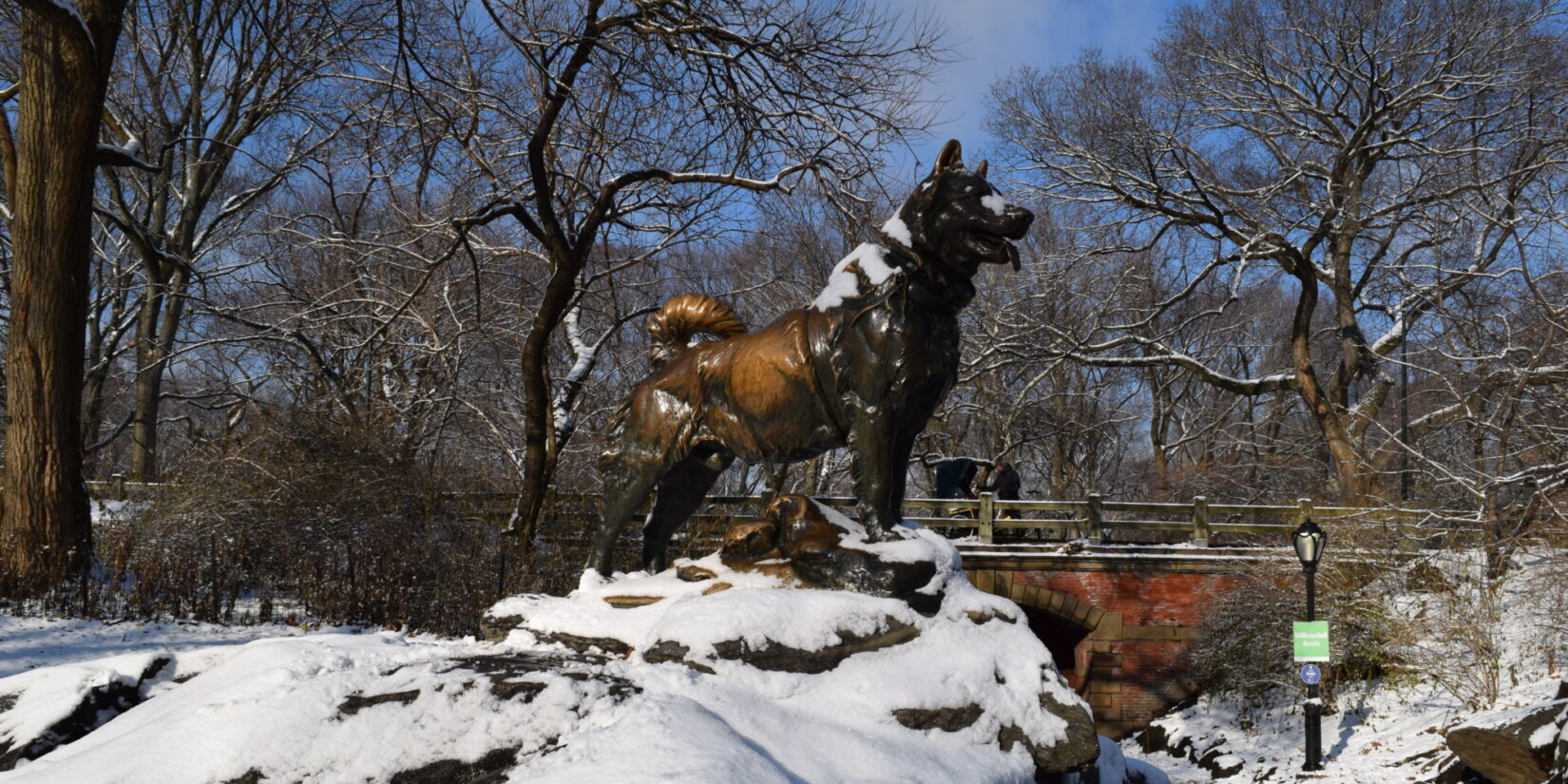The statue of Balto photographed in mid-winter snow