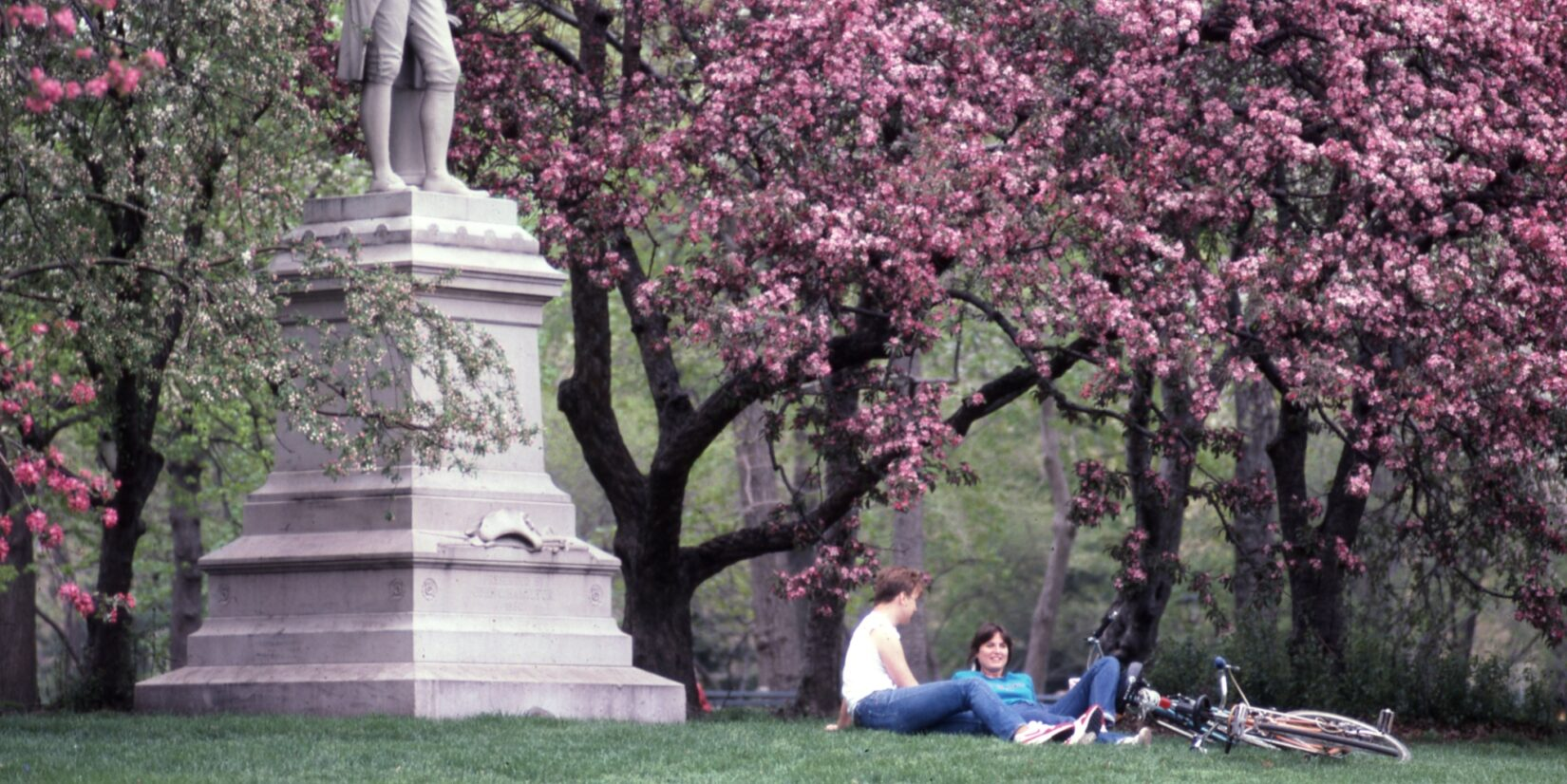 A couple relaxing on the grass beside the Pilgrim statue, with the background filled with cherry blossoms