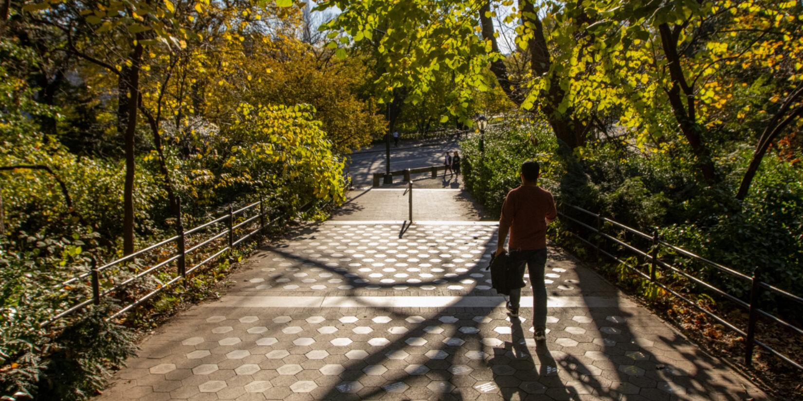 A pedestrian on Gilder Run, hidden in the long shadows of the setting sun