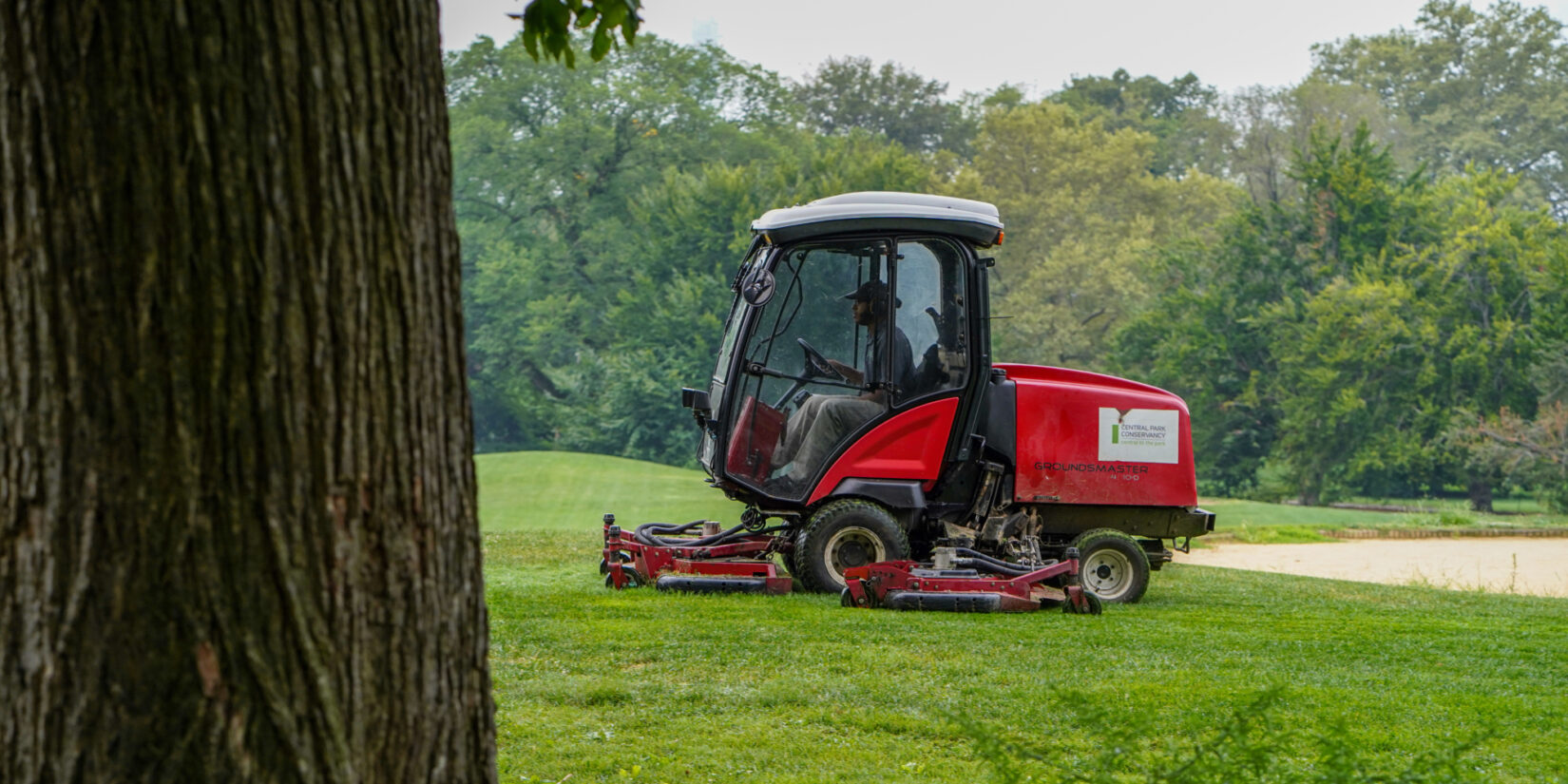 A red tractor mower in stark relief on a green lawn, framed by dark brown tree trunks.
