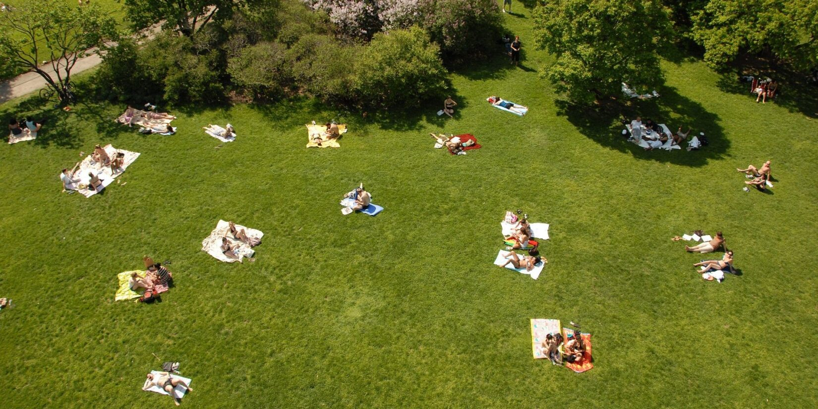 Sunbathers dot the landscape in this aerial shot of a Central Park lawn