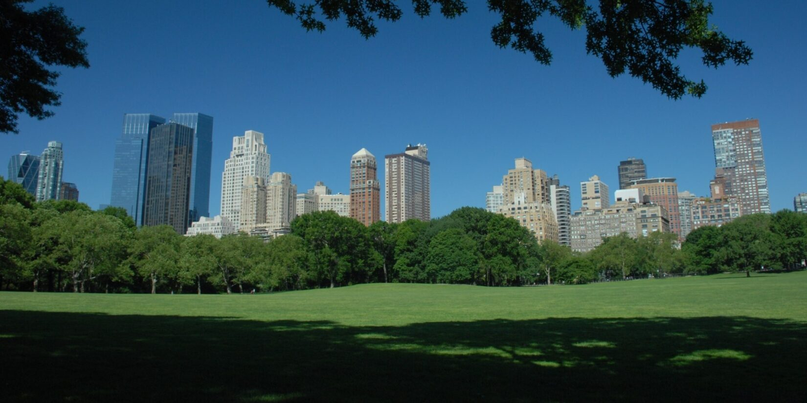 The Sheep Meadow, half cloaked in the shade of trees, foregrounds the midtown skyline