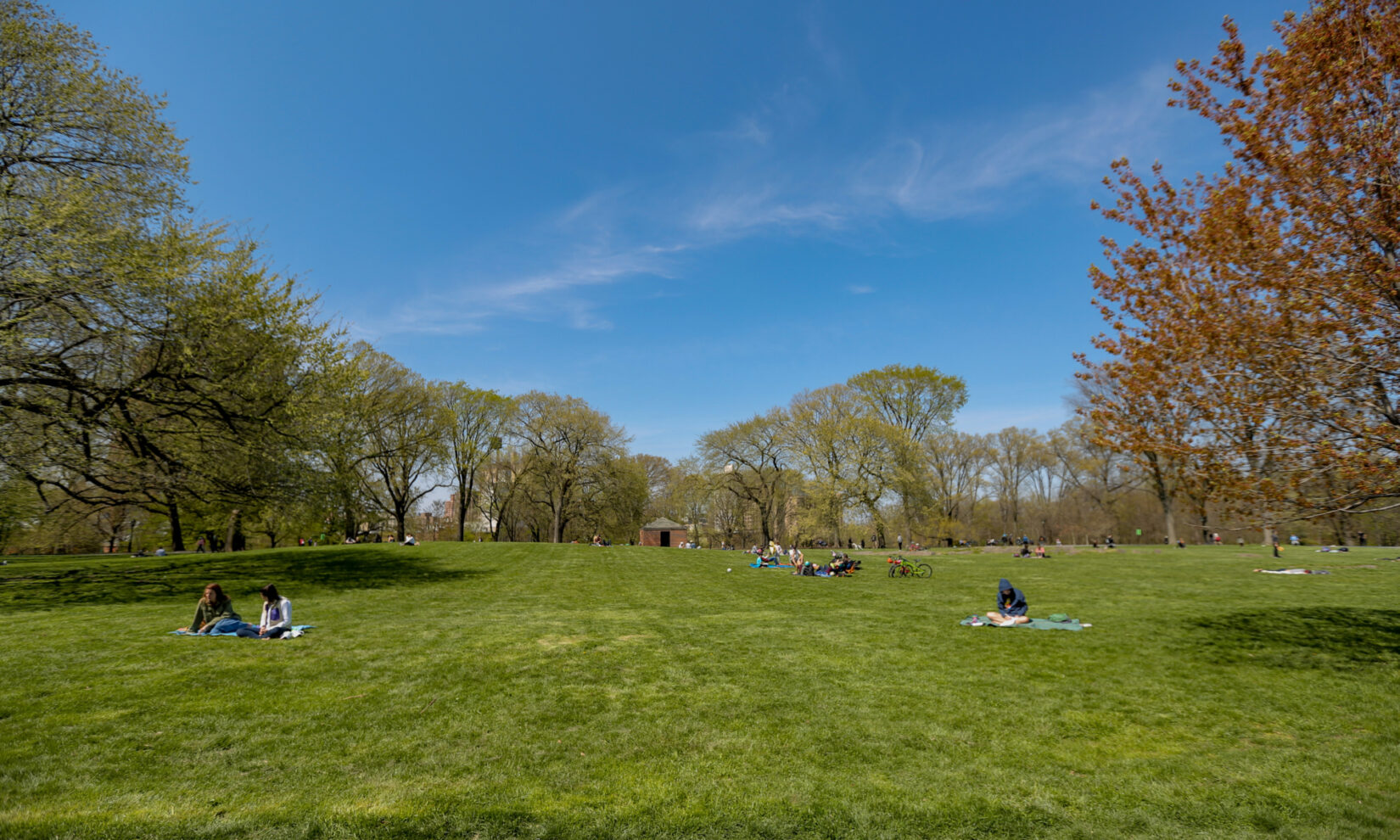 A apringtime view of the lawn with scattered parkgoers enjoying the weather