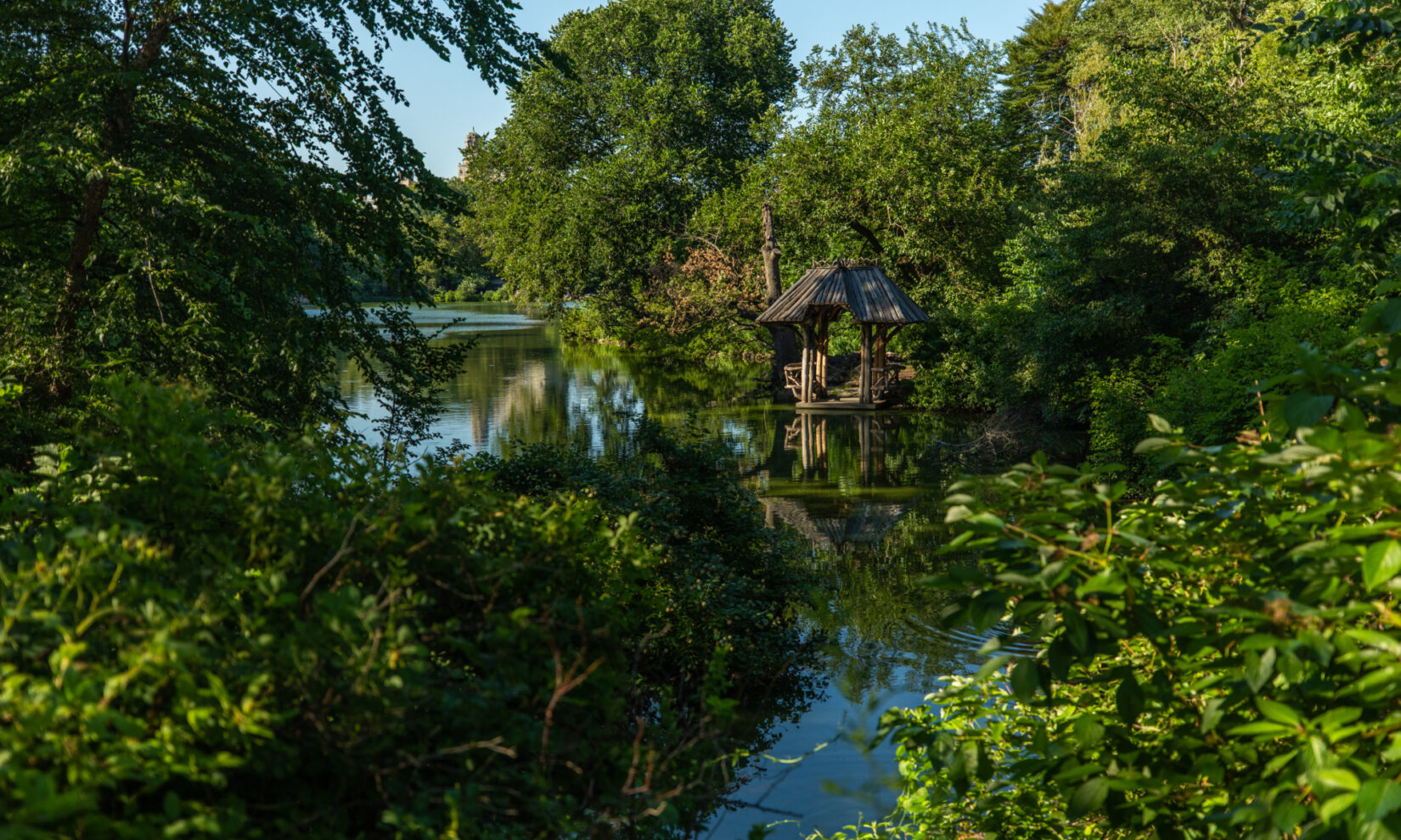 The boat landing is tucked into the shore of dense green flora that surrounds the Lake.