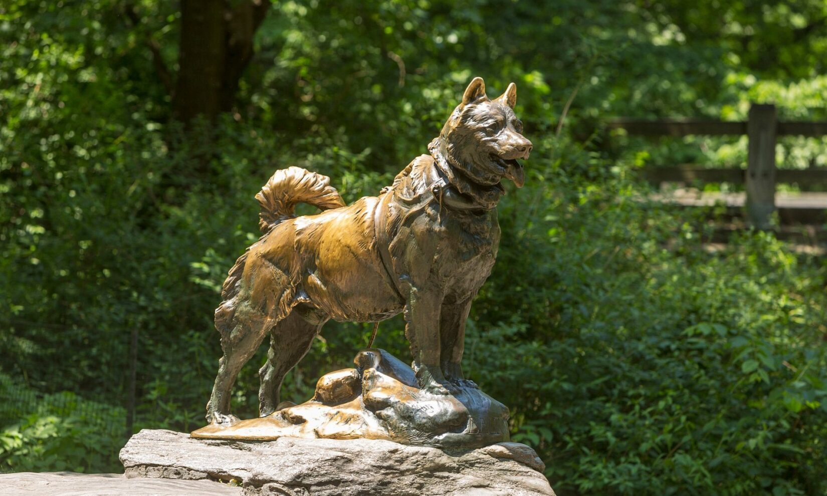 The statue of Balto stands alert atop a schist outcropping.