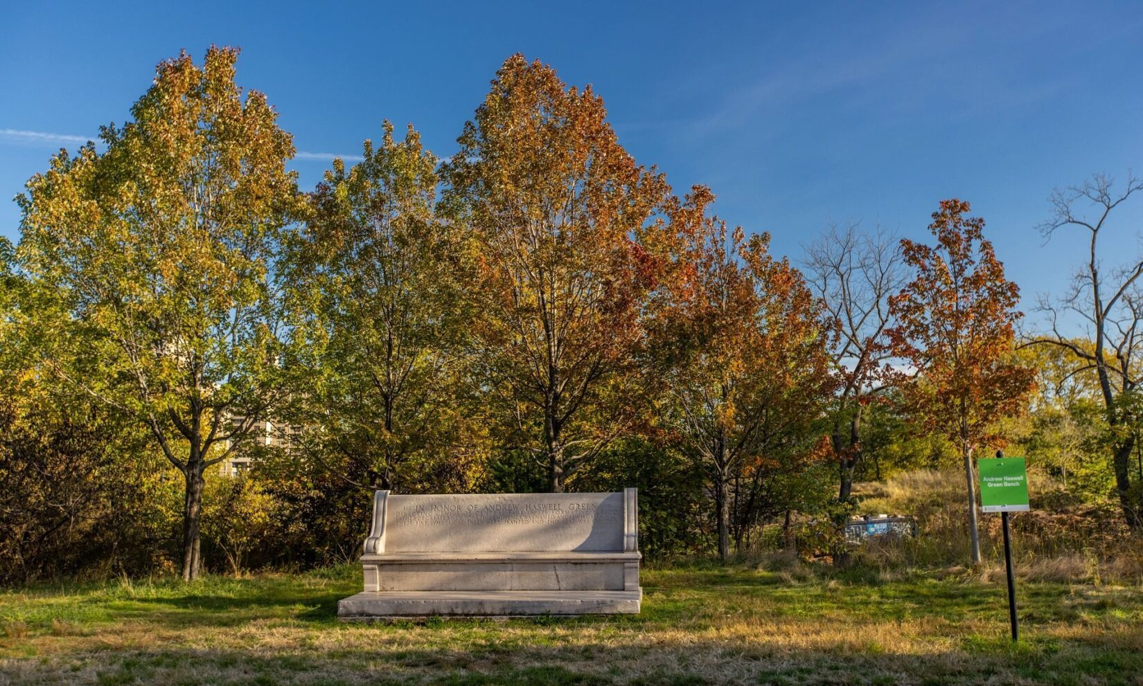 A frontal view of the bench sitting in front of a leafy, fall-colored stand of trees.