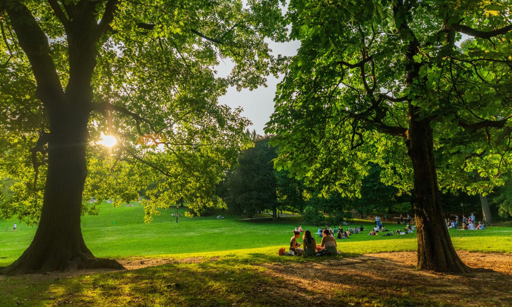 Visitors picnicking on Cedar Hill
